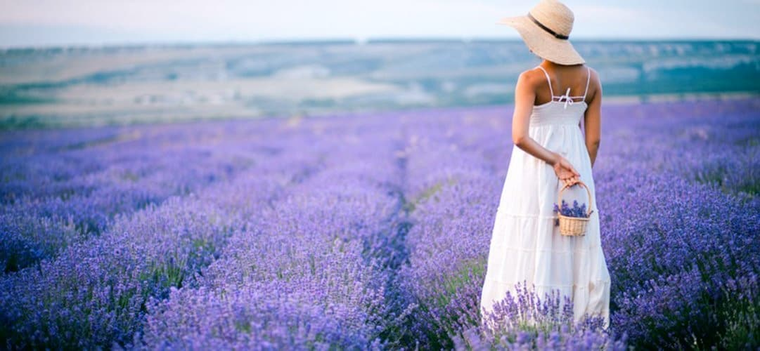 Provenza in camper: tra il lilla e il profumo di lavanda